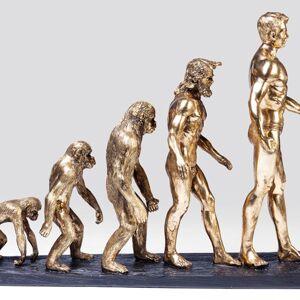 Soška Evoluce 58cm