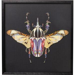 Obraz Frame Art Beetle 60×60 cm